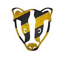 Badger - Yellow & Black Stripes Photographic Print