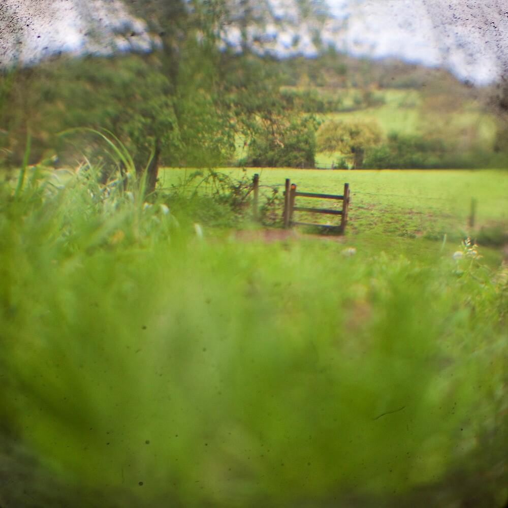 Empty field by Sharonroseart