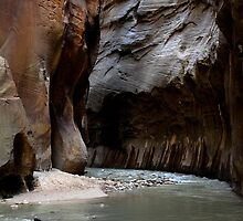 Zion by mtozier