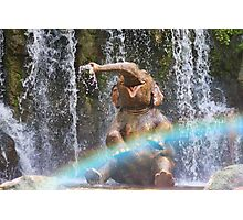 The World Famous Jungle Cruise Photographic Print