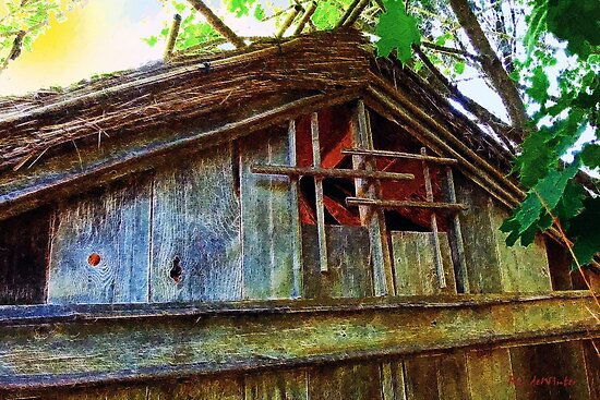 Barn in Summer Colors by RC deWinter