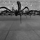 LOUISE BOURGEOIS - CROUCHING SPIDER  by Matsumoto