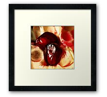 Persephone's Wager Framed Print