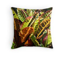 Variegated Throw Pillow