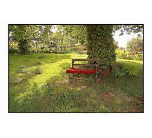 English Country Garden Photographic Print