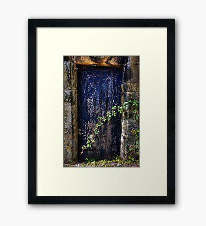 Door to the secret garden. Framed Print