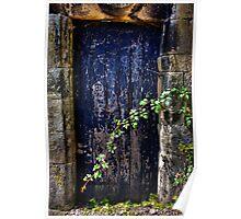 Door to the secret garden. Poster