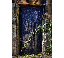 Door to the secret garden. Photographic Print
