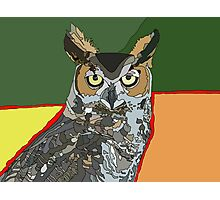 Owl Spirit Totem Photographic Print
