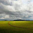 Gulgong field, July. A by Bill  Russo
