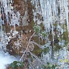 Icicles on the Mountain by rockinmom5509