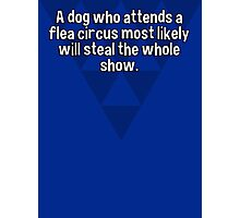 A dog who attends a flea circus most likely will steal the whole show. Photographic Print