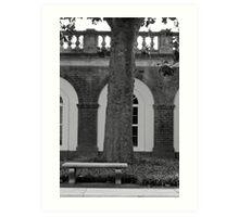 UVa Lawn 6 Art Print