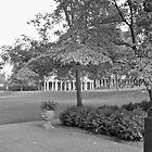 UVa Lawn 9 by arberinger