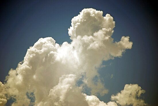 Poodle Powered Cloud by Carol Barona