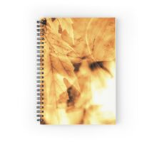 Mother Earth Hand / Spiral Notebook