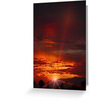 Last of the sun Greeting Card