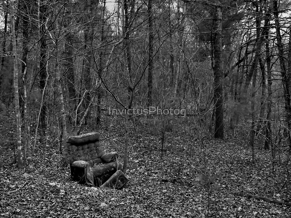 Wooded Comfort by InvictusPhotog
