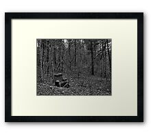 Wooded Comfort Framed Print