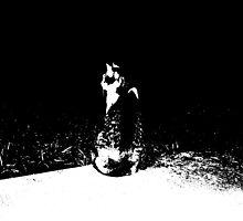 Lurking Predator by InvictusPhotog