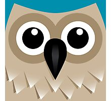 It's a Hoot! Photographic Print