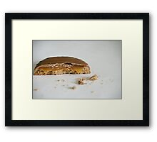Caramel Crown Framed Print