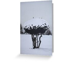Christmas snow landscape scenic original art  Greeting Card
