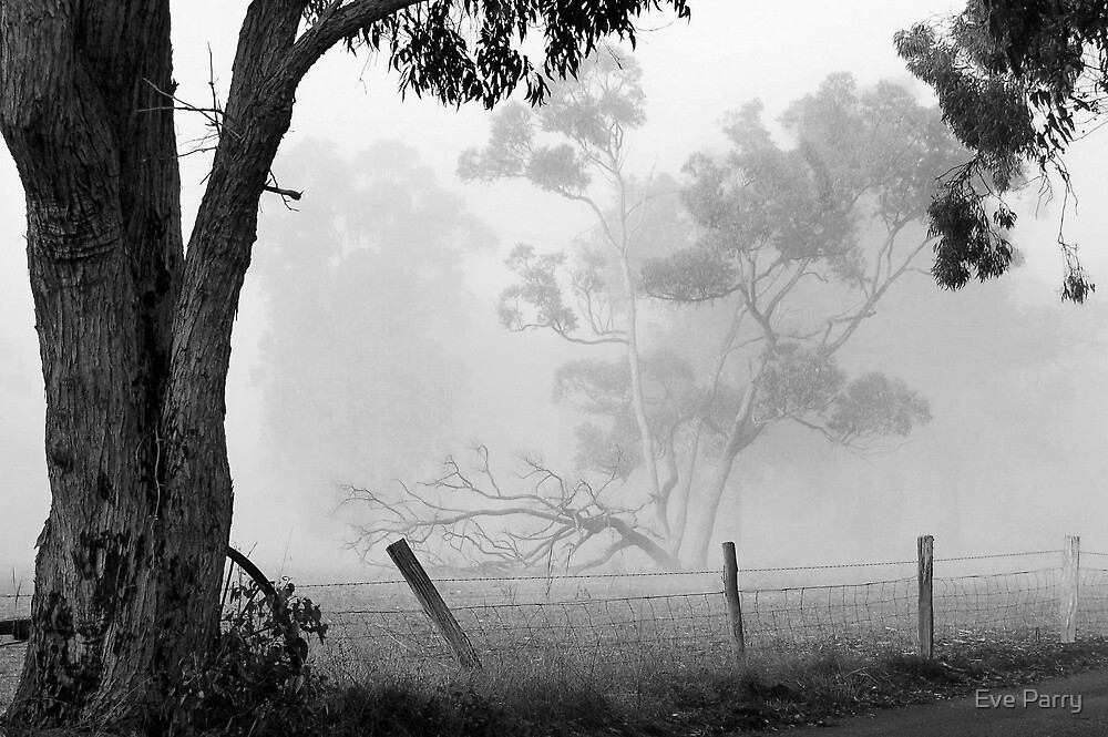 Favourite View - Fog by Eve Parry