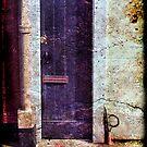 Slim Mans Doorway by RayDevlin