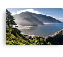 Looking Back At You ~ Oregon Coast, Pacific Ocean Canvas Print