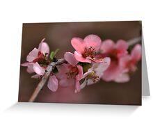 Pink with a Golden Touch Greeting Card