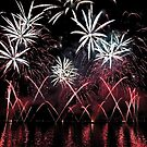 Fireworks 4 by David Freeman
