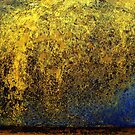 Golden Falls by sedge808