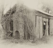The Hut by adbetron