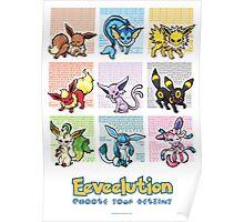 Pokemon Eeveelutions Poster