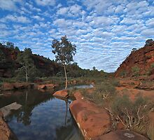 Palm Valley reflections, Central Australia by rolpa