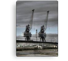 Two Cranes Canvas Print