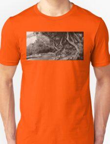 Landscape - The Forbidden Forest T-Shirt