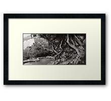 Landscape - The Forbidden Forest Framed Print