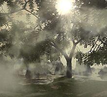 Misty Woods (II of 4) by XadrikXu