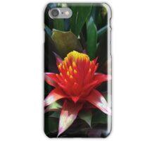 Tropical Flower, exotic bold colors, original art, wall decor iPhone Case/Skin