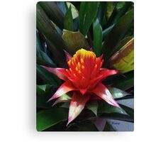 Tropical Flower, exotic bold colors, original art, wall decor Canvas Print