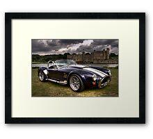 Cobra & Castle Framed Print