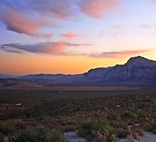 Red Rock Canyon by Christine Annas