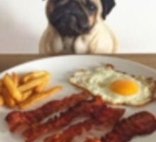 Pugs & Bacon Sticker