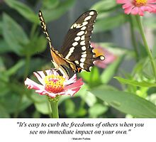 Pic Quote of the Day (Freedom - Forbes) by Prismcrow