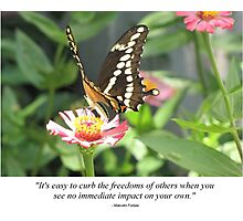 Pic Quote of the Day (Freedom - Forbes) Photographic Print