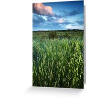 Blakeney Grass Greeting Card