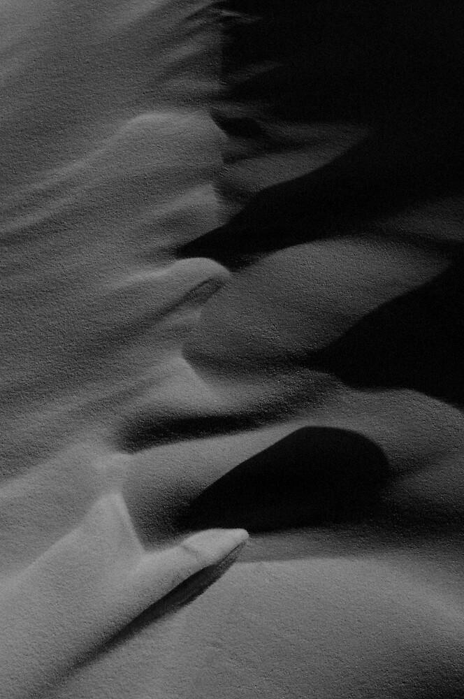 Sahara by robinjgraham
