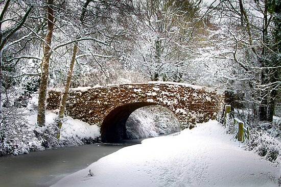 A Winter's day by Lyn Evans